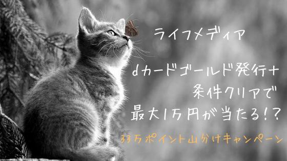 ライフメディア dカード GOLD発行+条件クリアで33万円山分け