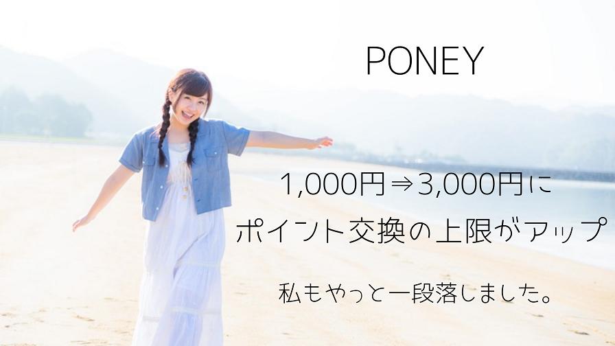 PONEY 1,000円⇒3,000円にポイント交換の上限がアップ!やっと一段落しました。