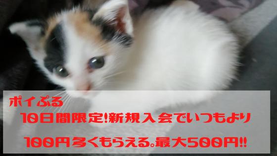 ポイぷる 期間限定、新規入会で500円稼げるチャンス、即200円は確定です。