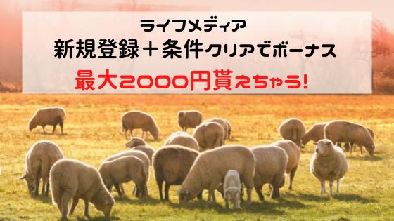 ライフメディア 新規登録+条件クリアで最大2000円貰える