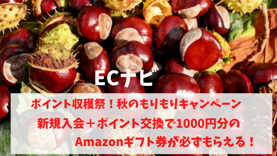 ECナビ ポイント収穫祭!秋のもりもりキャンペーン 新規入会+ポイント交換でAmazonギフト券1000円がもらえる
